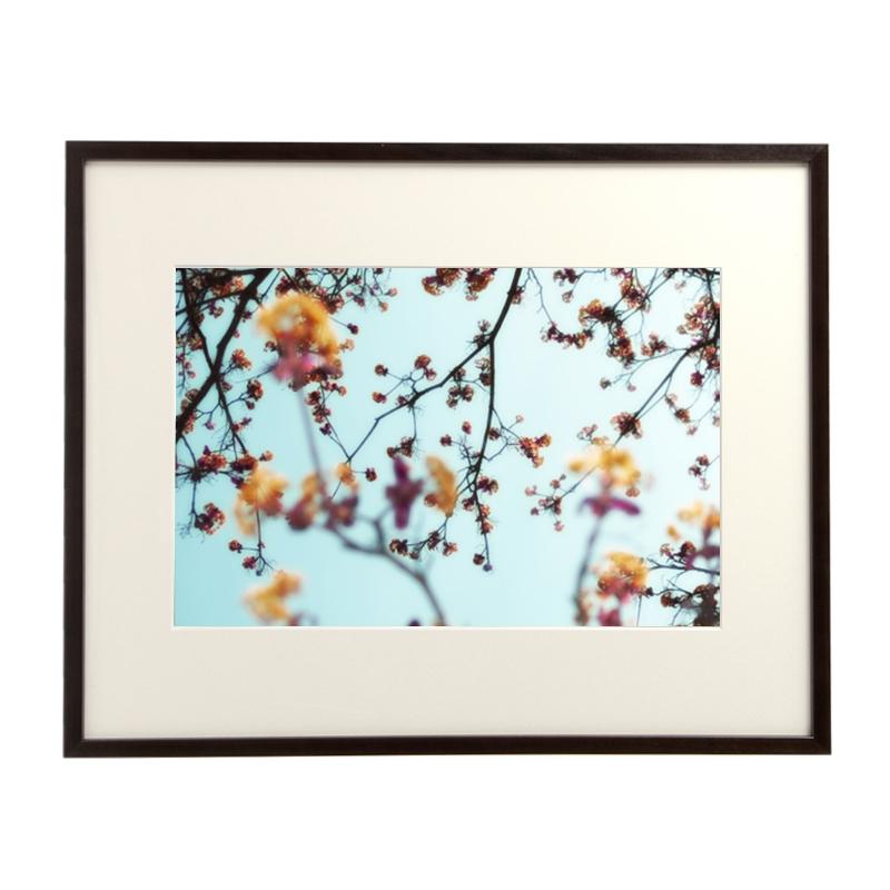 amana impressions / Blossoms