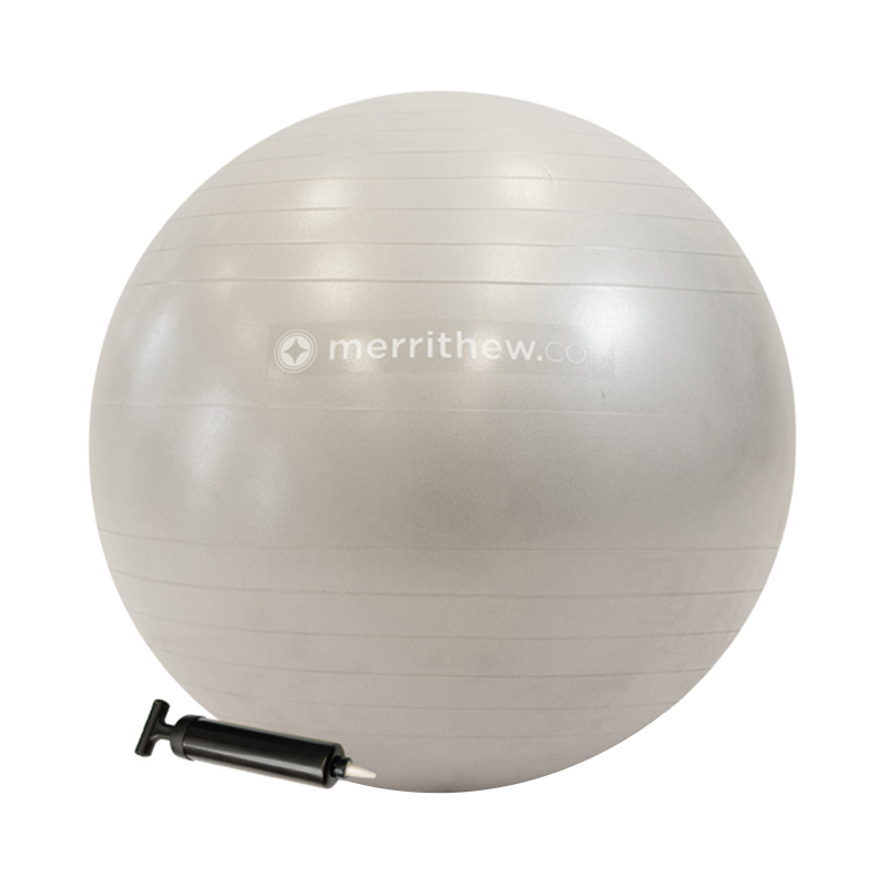STABILITY BALL 65CM WITH PUMP SILVER