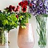 <strong>Living with flowers</strong><br />お花を活けるためのレッスン動画をご紹介しています。<br />詳しくはこちら
